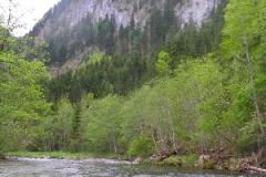 Wildwasserausfahrt